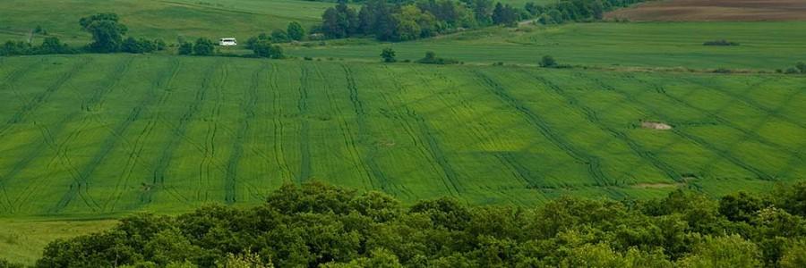 Eine Reise durch die Honig-Landschaft Bulgariens